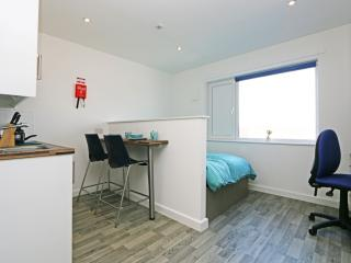 Whole studio sleeps 2 fly Luton 15 min (8 - Streatley vacation rentals