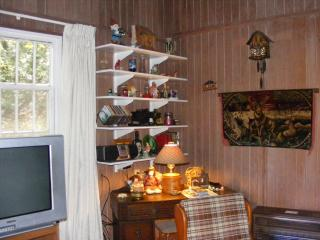 2 bedroom House with Internet Access in Suches - Suches vacation rentals