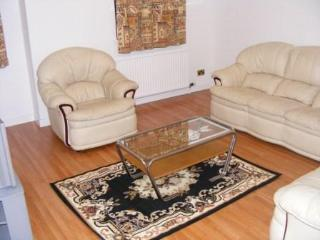 A SPECIOUS 1 BEDROOM  WITHIN  A  2  BEDROOM FLAT - Aberdeen vacation rentals