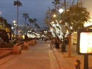 SANTA MONICA: 2BR Walk to the Beach, Pier and Shopping! FREE Parking and WIFI - Santa Monica vacation rentals