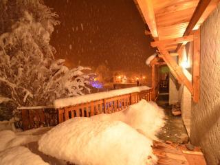 Asphodele - Les Deux-Alpes vacation rentals