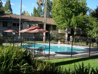 Beautiful 2Bed/2Bath Condo in Downtown WalnutCreek - Walnut Creek vacation rentals