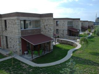 Nice Villa with Long Term Rentals Allowed (over 1 Month) and Housekeeping Included - Afyon vacation rentals