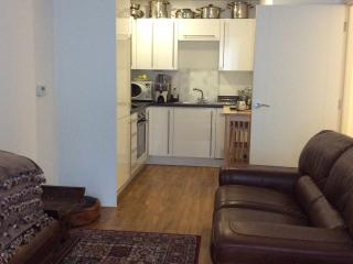 Dble room in modern apartmt easy access to Gatwick - Croydon vacation rentals