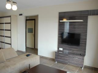 1 bedroom Condo with Television in Afyon - Afyon vacation rentals