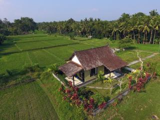 COZY AND CLEAN HOUSE in Ubud Rice Fields - Ubud vacation rentals