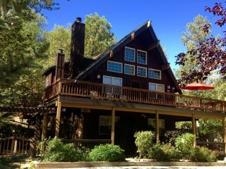 Upscale Craftsman - WALK TO LAKE Beach Club Passes - Lake Arrowhead vacation rentals