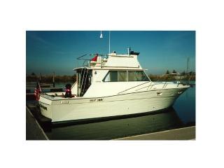 Stockton Hotel Alternative: Luxurious Motor Yacht - Stockton vacation rentals