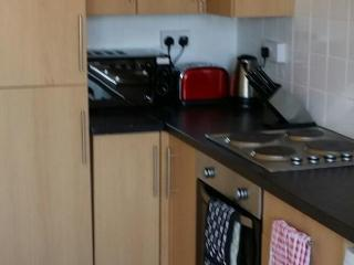 Chester Road W. Serviced Apartment - Chester vacation rentals