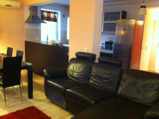 Brasov Sweet Retreat-Brasov Penthouse Sauna&Spa - Brasov vacation rentals