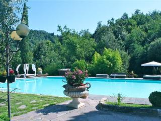 Luxury Country Mill between Florence and Lucca - Carmignano vacation rentals
