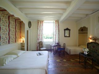 1 bedroom Chateau with Internet Access in Durtal - Durtal vacation rentals