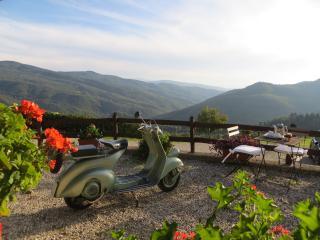 Cardellino - Dicomano vacation rentals
