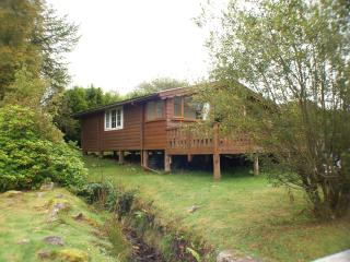 Log cabin with the sound of a babbling brook - Trawsfynydd vacation rentals