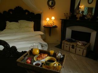 Appartement Romantique au Château de Chambiers - Durtal vacation rentals