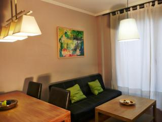 Bright 2 bedroom Apartment in Salamanca with Internet Access - Salamanca vacation rentals