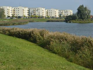 Flat  next to the buetiful pond,15 min from center - Gdansk vacation rentals