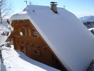 Charming Chalet with Television and DVD Player - Zrece vacation rentals