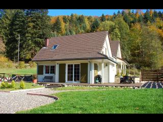 Gîte Clairlune avec Sauna, Bain-nordique, Billard (Alsace, Haut-Rhin) - Wildenstein vacation rentals