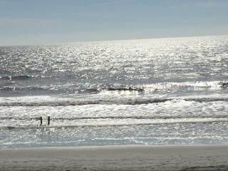 Beautiful Views Direct Ocean Front NMB Condo - North Myrtle Beach vacation rentals
