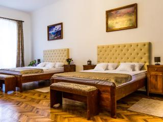 Perfect 1 bedroom Sibiu Condo with Internet Access - Sibiu vacation rentals