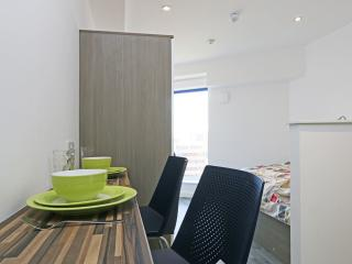 Your Fab Studio in Luton slps 2 (16 - Streatley vacation rentals