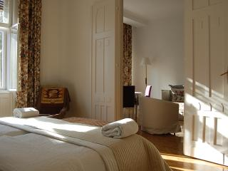 2 ENSUIT BEDROOM + LIVINGROOM & BALCONY next OPERA , wifi and AC - Budapest vacation rentals
