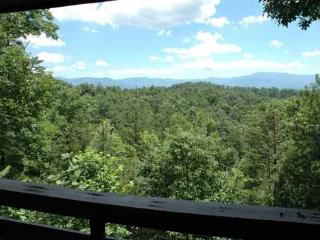 1 bedroom Cabin with Fireplace in Sevierville - Sevierville vacation rentals