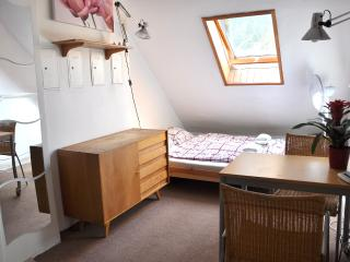 Cozy Studio with WiFi near University and Downtown - Prague vacation rentals