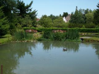 Logement dans une ferme  coeur des Vosges - Saint Die des Vosges vacation rentals