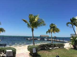 Newly Renovated Unit In Tropical Paradise - Islamorada vacation rentals