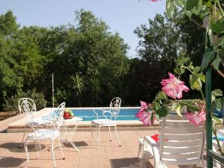 Country House with terrace,poo - Cala Carbo vacation rentals