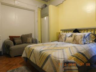 Thompson Flat - Brooklyn vacation rentals