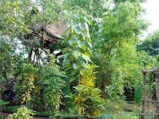 A tree house, a free house, a secret u & me house. - Gokarna vacation rentals