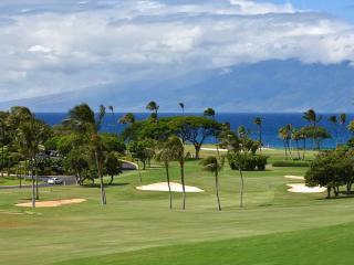 Maui Eldorado: Maui Condo A202 - Kaanapali vacation rentals