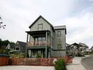 Beautiful House in Pacific Beach with Internet Access, sleeps 14 - Pacific Beach vacation rentals