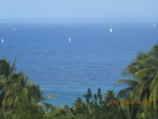 Ocean View Condo in St. Joseph - Bathsheba vacation rentals