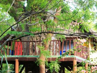 Mbuyu treehouse - Diani vacation rentals