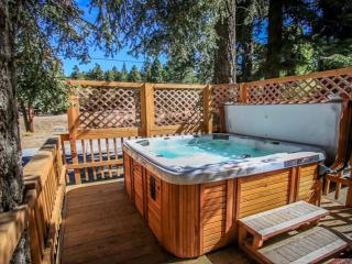 Moonridge Cabin near Bear Mtn! Jacuzzi/WiFi/ Cable - Big Bear Lake vacation rentals