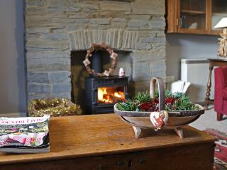 Treetops Cottage - Cilgerran vacation rentals