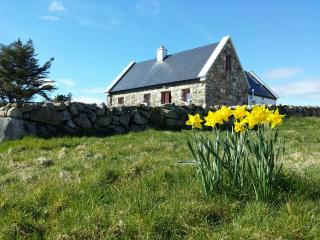 Artistic Cottage Retreat Connemara - Kilkieran vacation rentals