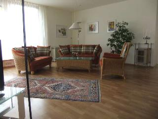 Comfortable holiday apartment in the Black Forest - Alpirsbach vacation rentals