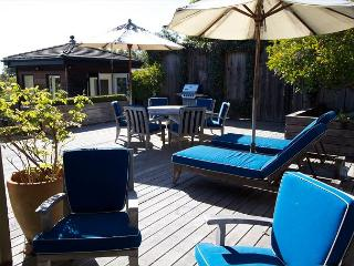 A piece of paradise on the hill in Stinson! - Stinson Beach vacation rentals
