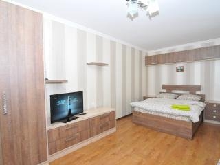 Bright and cozy apartment in CENTER - NEGRUZZI STR - Chisinau vacation rentals