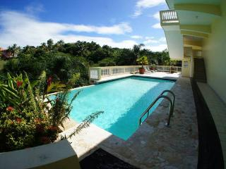 Penthouse 304  Walking Distance to Sandy Beach - Rincon vacation rentals