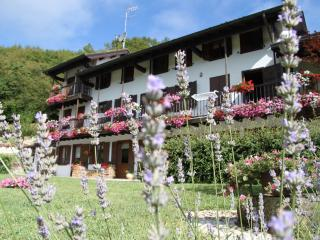 Beautiful Cottage with Internet Access and Satellite Or Cable TV - Feltre vacation rentals
