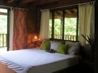 Convenient House with Internet Access and Long Term Rentals Allowed - Dominical vacation rentals