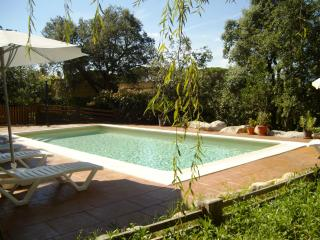 Beautiful holiday villa with saline pool fpr 15 guests - Sils vacation rentals