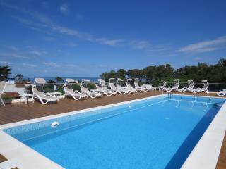 EXCELENTE DUPLEX,  CON VISTA AL MAR, CON SEGURIDAD - Punta del Este vacation rentals