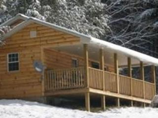 Spectacular Mountain Log Cabin for Outdoorsmen - Dugspur vacation rentals